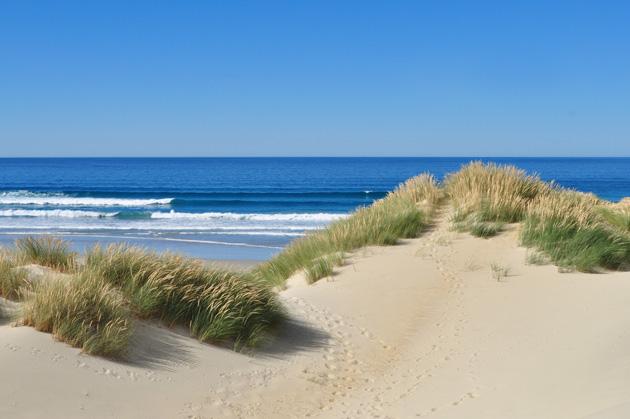 2019 - Zeit für Ihre Spuren im Sand